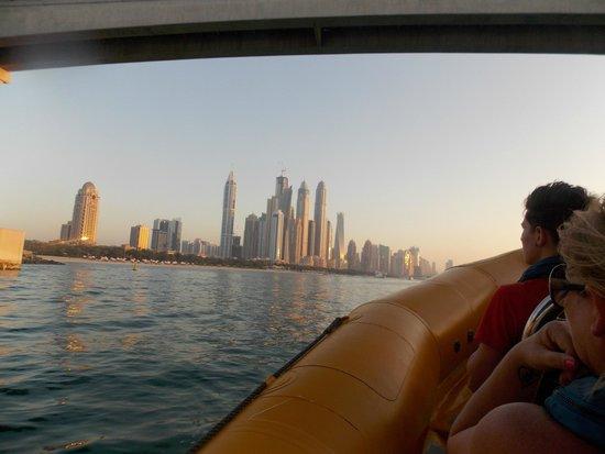 The Yellow Boats : marina view