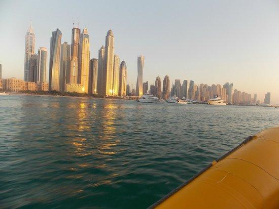 The Yellow Boats : Marina