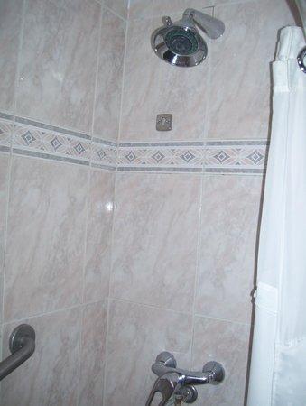 Holiday Inn Montevideo: tub