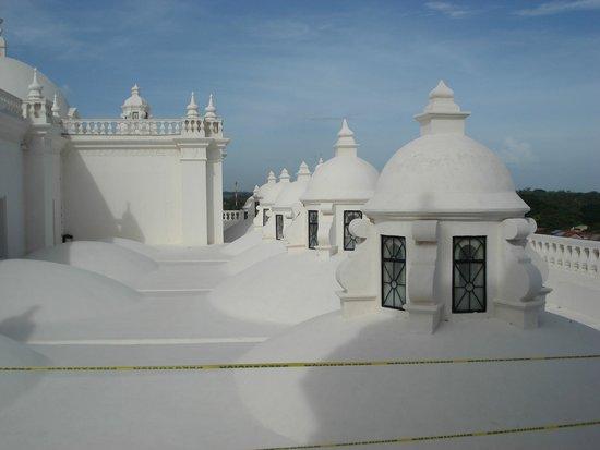 Basilica Catedral de la Asuncion: En el techo de la catedral de Leon