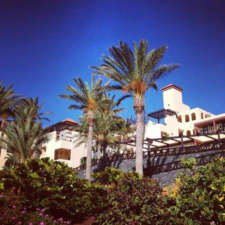 Occidental Jandia Mar : Espace hotelier