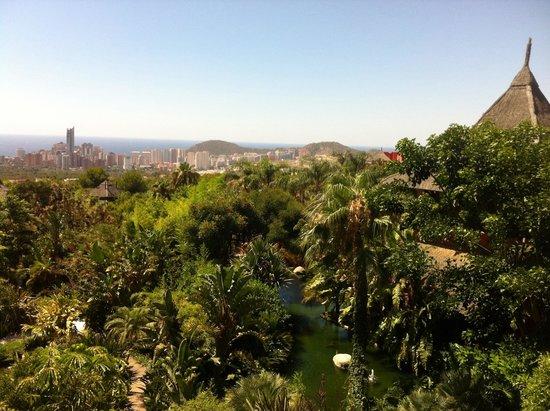 Asia Gardens Hotel & Thai Spa, a Royal Hideaway Hotel: Vistas desde habitación