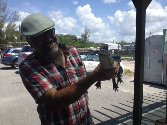 Air Boat USA: Handling Alligator at the end of the tour