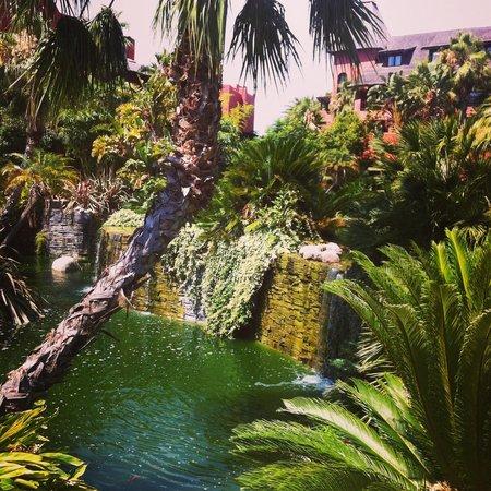 Asia Gardens Hotel & Thai Spa, a Royal Hideaway Hotel : Rincones