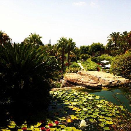 Barcelo Asia Gardens Hotel & Thai Spa : Rincones