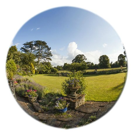 Uplands House: Back Garden