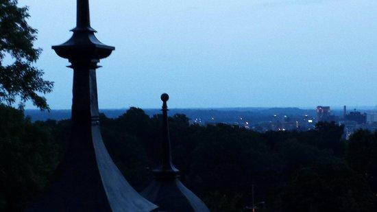 Henderson Castle Restaurant: Rooftop view
