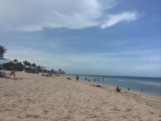 Hilton Fort Lauderdale Beach Resort : The wonderful beach area