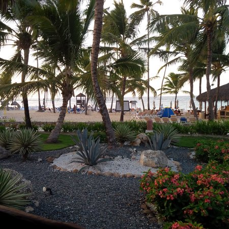Dreams Punta Cana Resort & Spa : a view of the beach from Oceana restaurant