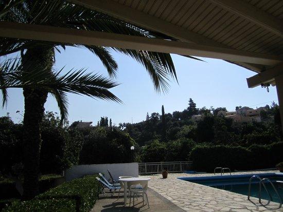 Anita Hotel: poolview