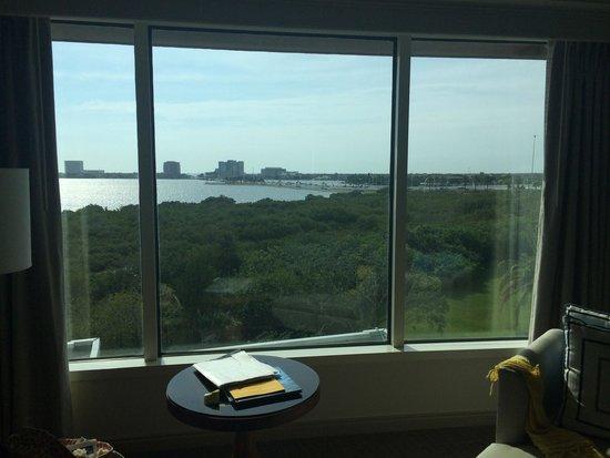 Grand Hyatt Tampa Bay : Panorama dalla camera
