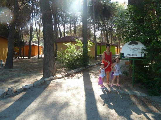 Club Nature Village: passeggiata in pineta fino al mare