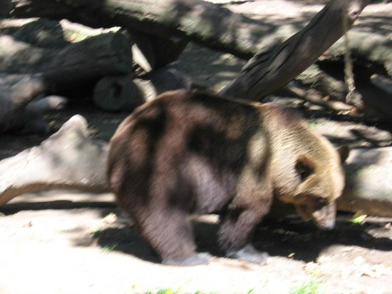 Zoo Buenos Aires : 3