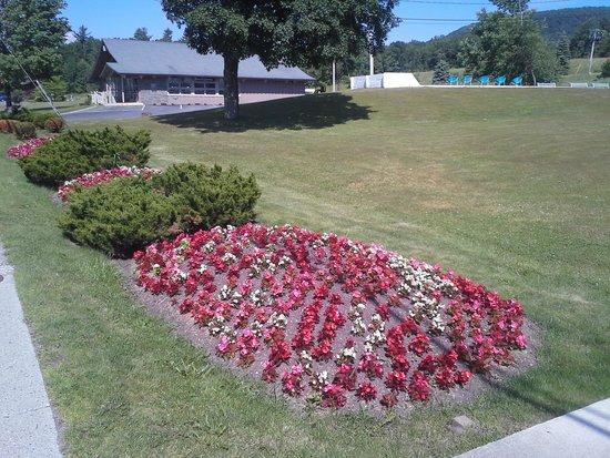 Villa Vosilla: Floral display along Route 23A