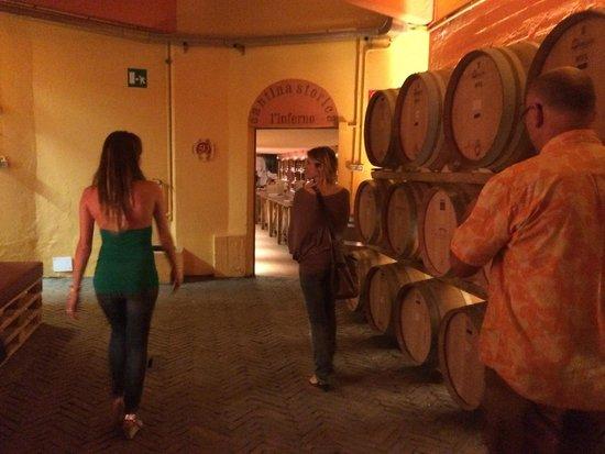 Buonamico Tenuta : Inside Buonamico winery, touring the cellars