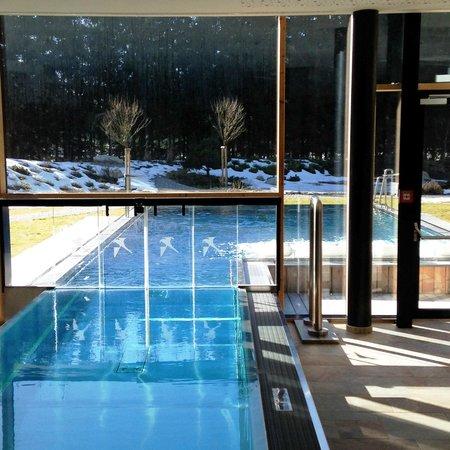 Falkensteiner Hotel Schladming: Indoor/outdoor pool