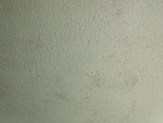 Mercure Perth Hotel: Mould on the ceiling.