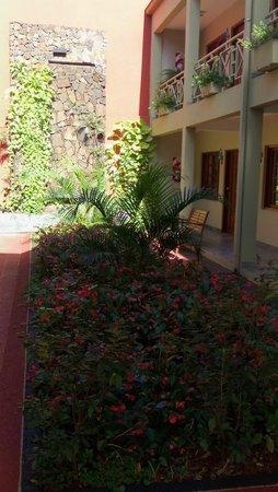 Hotel Jardín de Iguazú: Jardín