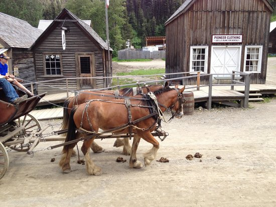 Barkerville Historic Town: Stage coach rides.