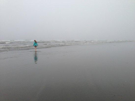 Pacific Beach State Park: Sandy ocean beach