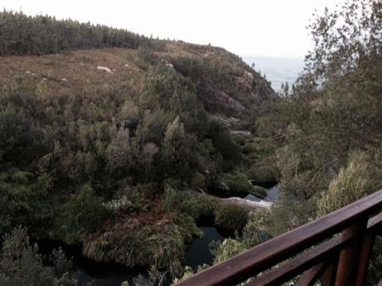 The Fernery Lodge & Chalets: View from Loerie Cabin - best of them all
