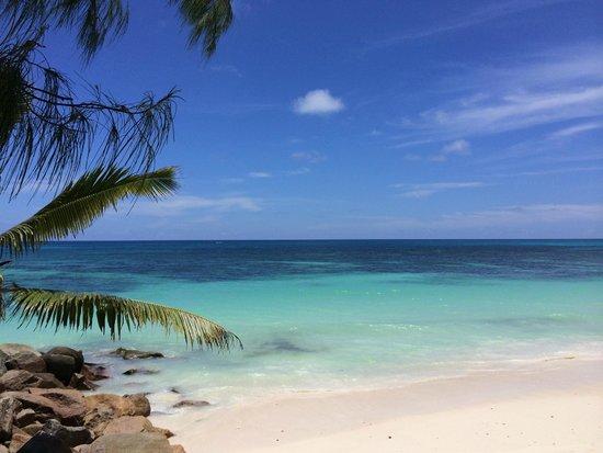 Castello Beach Hotel: Hotelstrand - einfach Klasse