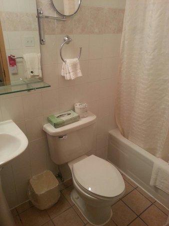 Econo Lodge Times Square: Bathroom