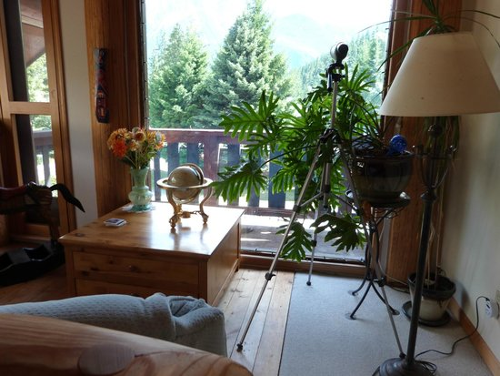 The Log House Inn: vue du balcon