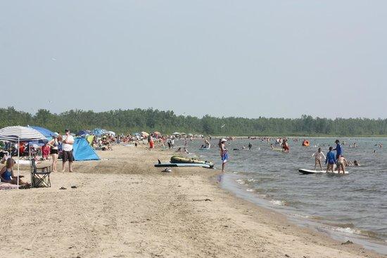 Presqu'ile Provincial Park: Beach 3