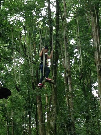 Bali Treetop Adventure Park: height elements 2