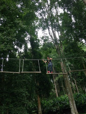 Bali Treetop Adventure Park: height elements 1
