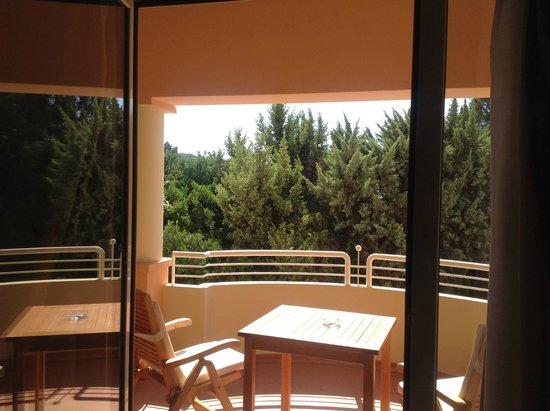 Pullman Timi Ama Sardegna : balcone e giardino