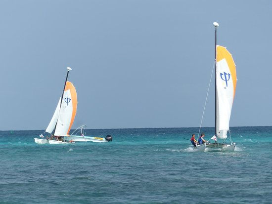 Club Med La Pointe aux Canonniers : Catamaran
