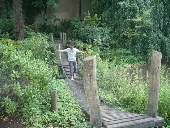 Berlin Zoological Garden : Bridge in the Zoo