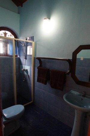 Hotel Dhammika: Dusche mit Heiß- und Kaltwasser