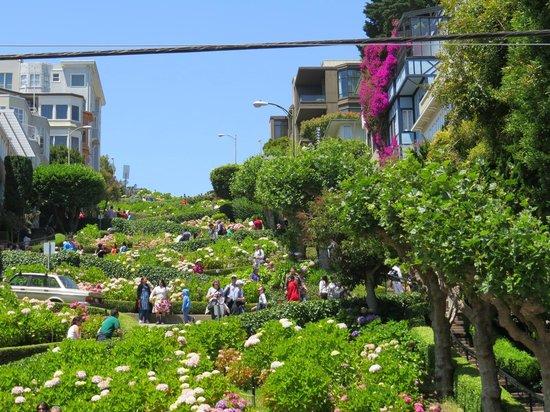 Lombard Street: VISTA DA RUA DE BAIXO