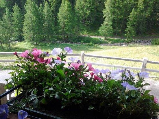 Baita Luleta: vista dalla finestra