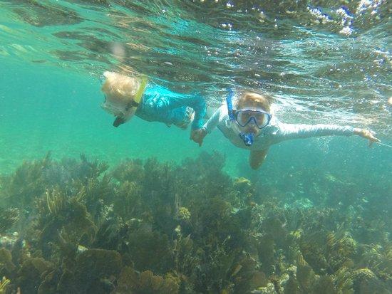 Grecian Rocks: Beautiful snorkel spot.