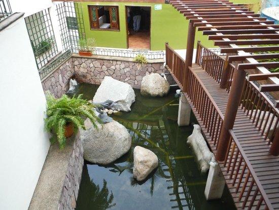 Casa Iguana Hotel: Turtle garden from 2nd floor