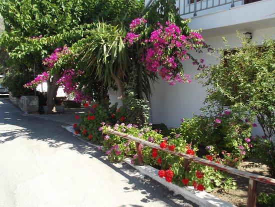El Greco Apartments: Pretty village house
