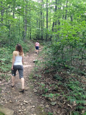 Deep Creek Lake State Park: Hiking Up