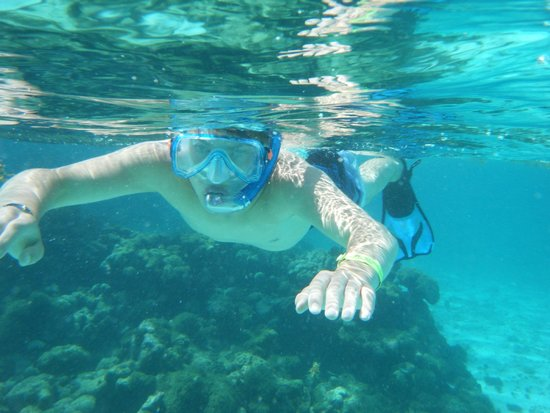 Simply Carriacou Island Tours : Snorkelling