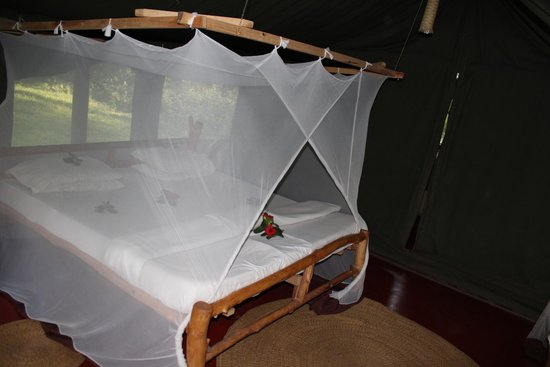 Migunga Tented Camp: Tent