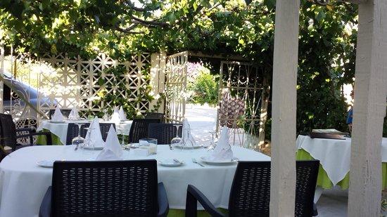 Restaurante Mr. Freddie's