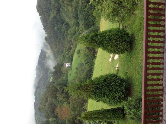 Olazi : Basque countyry balcony view from our B & B
