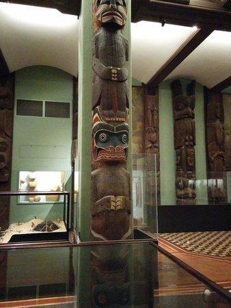 American Museum of Natural History: Museum