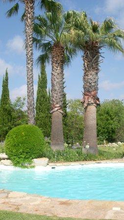 Casa Belaventura: Fantástico jardim