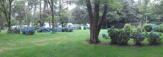 Camping du Domaine de Lanniron : emplacements tente camping car