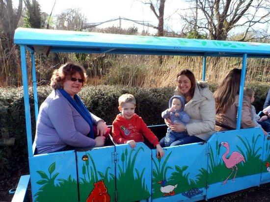 Paignton Zoo Environmental Park: The Little Train