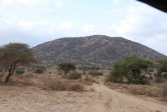 Shu'mata Camp: Auf dem Weg zum Camp